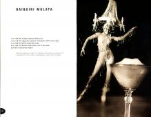 Rum Drinks & Havanas | Visionality of Amiel Pretsch